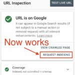 request indexing google feature enabled